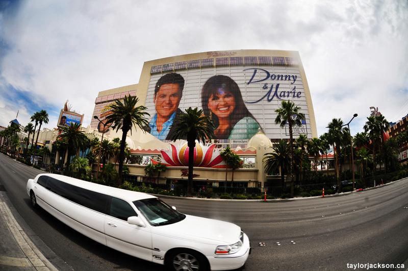 Flamingo Las Vegas Photography
